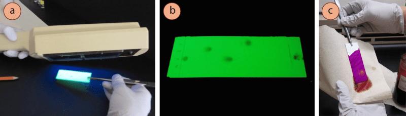 Figura 3: a) Visualización de una placa de TLC usando luz UV, b) Los compuestos aparecen oscuros sobre un fondo verde fluorescente, c) Uso de una mancha química para visualizar una placa.