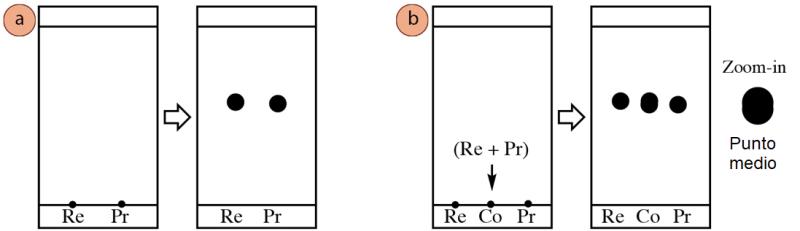 Figura 6: a) Dos compuestos con valores de Rf similares (Re significa reactivo y Pr significa producto), b) Cómo puede aparecer el carril de co-spot si el carril del reactivo y el del producto contienen compuestos diferentes.