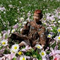 Carya's Spring Flowers