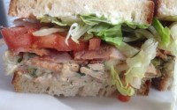 foghorn legless sandwich with chicken salad