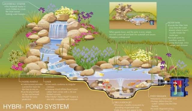Pond Operating System - Infograph - quinju.com