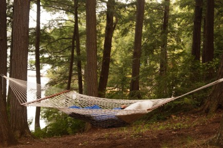 hammock in woods - quinju.com