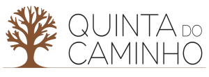 QC_Logo2019