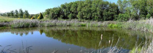 quinta dos trevos turismo rural e artesanato lago norte