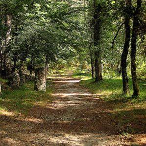 que visitar quinta lamosa ecoturismo gondoriz arcos de valdevez pnpg