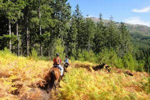 atividades horse riding week quinta lamosa ecoturismo gondoriz arcos de valdevez