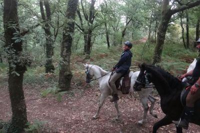 horse-riding-week-03