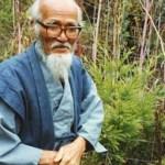 Livro- A revolução de uma palha. Masanobu Fukuoka