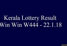 Win Win W444