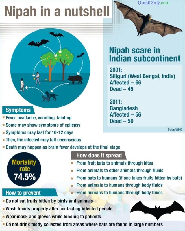 Nipah Virus Symptoms