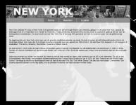 Voorbeeld foto website over NY