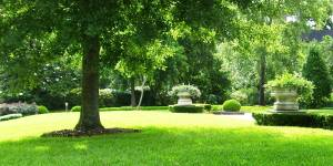 East London Buffalo City Metropolitan Area Lawn Cutting and Maintenance Services