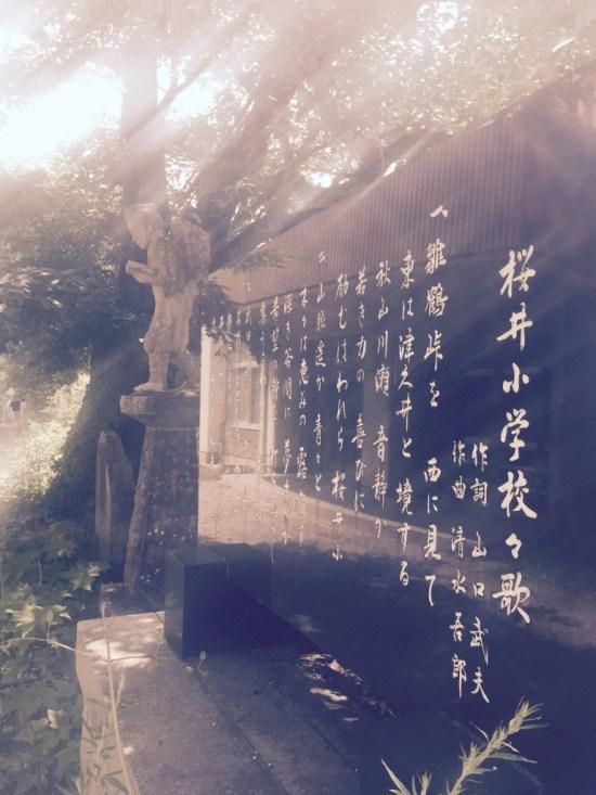 キヌア施設栽培:桜井小学校