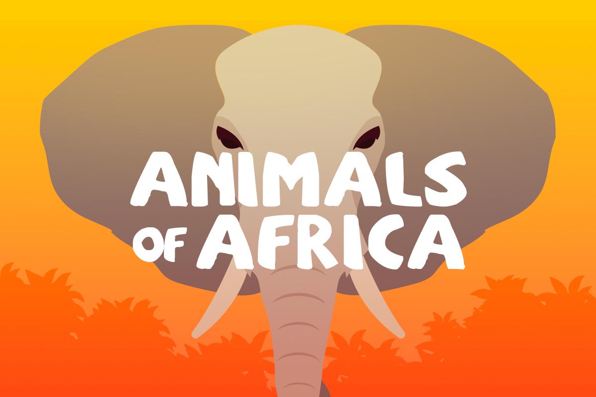 True Or False Quipo Quiz Animals Of Africa