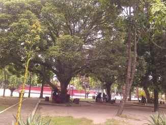 Bangganya Menjadi Mahasiswa Universitas Negeri Yogyakarta