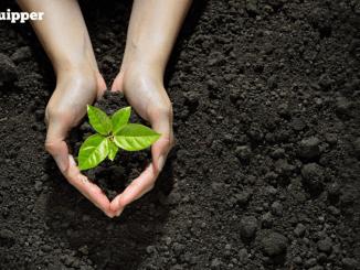 Universitas Trilogi dan Petani Muda Korea Bersinergi Majukan Pertanian
