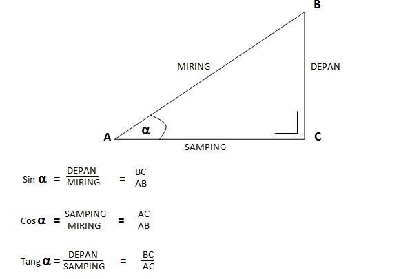 Menghitung Tinggi Pohon Menggunakan Rumus Identitas Trigonometri