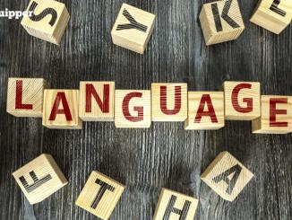 Ada 20 Prospek Kerja Lulusan Bahasa Asing dan Sastra Inggris yang Menantimu!