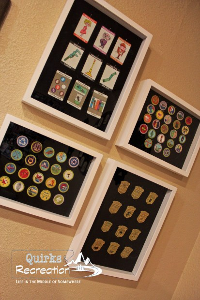 Shadow Box Specimen Art Collection