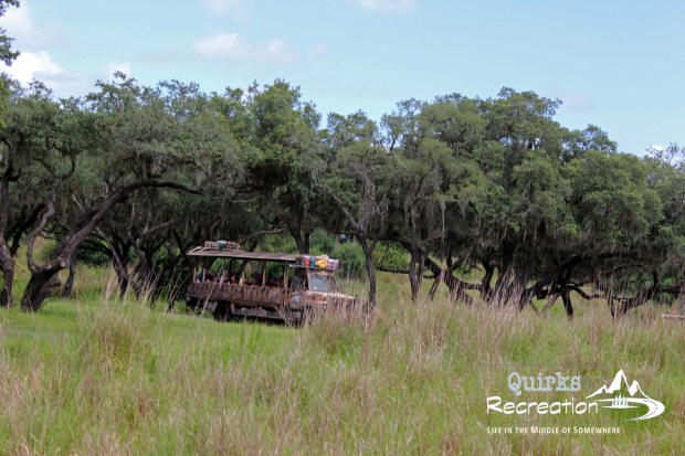 Jeep trekking through the Kilimanjaro Safaris in Animal Kingdom - Walt Disney World