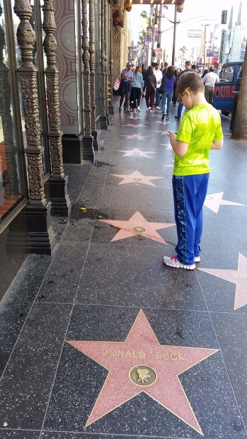 boy standing on Hollywood Walk of Fame