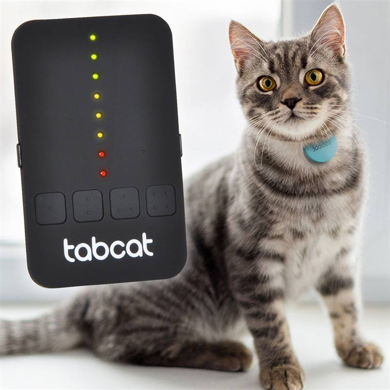 cat tracking collar by tabcat