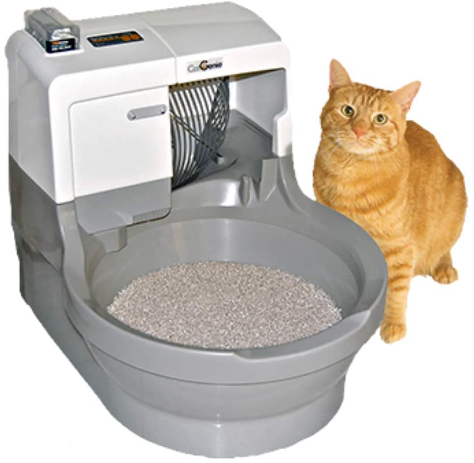 cat genie box