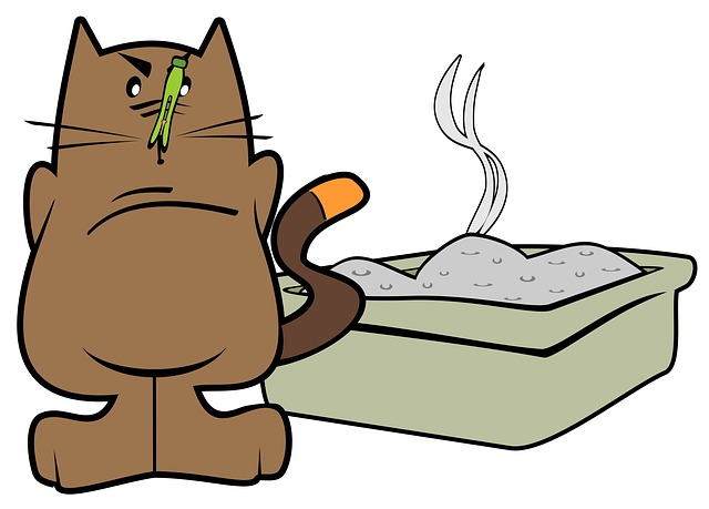 smelly kitty litter
