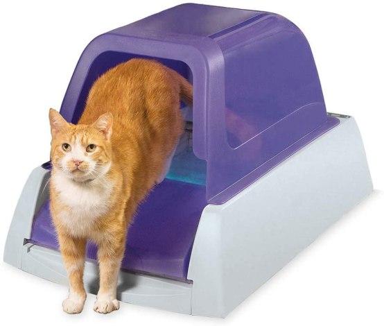 best cat gift self clean litter box