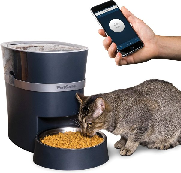 cat gift automatic pet feeder