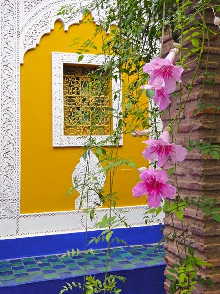vibrant-colours-at-the-majorelle-garden-marrakech