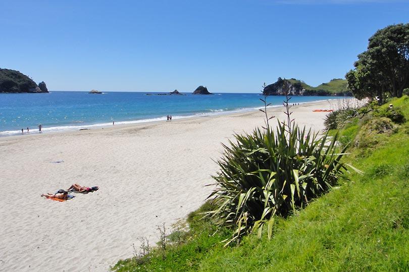 Beautiful Beaches of The Coromandel - the pristine white sands of Hahei Beach.