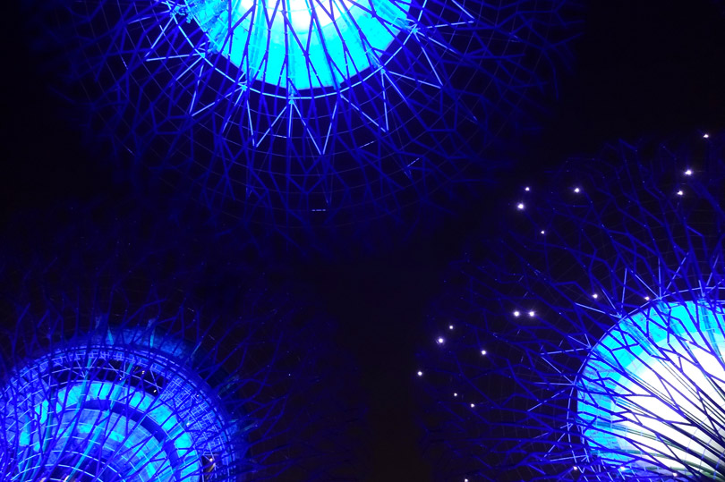 Surreal Singapore - looking up at the magical Supertrees