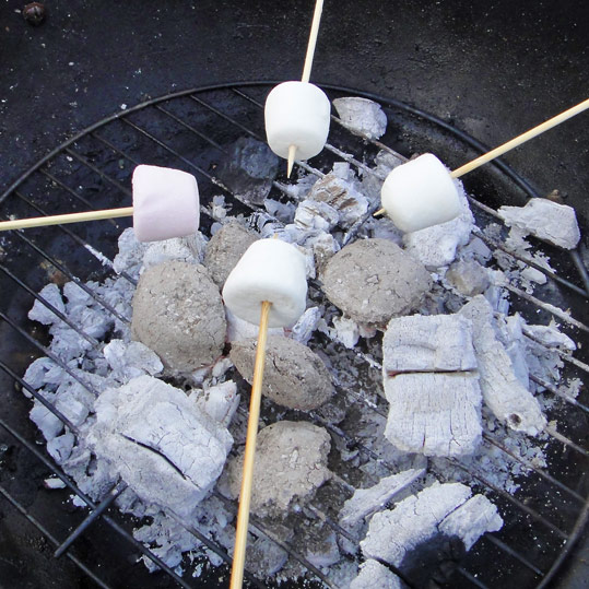 Toasting marshmallows over a barbecue