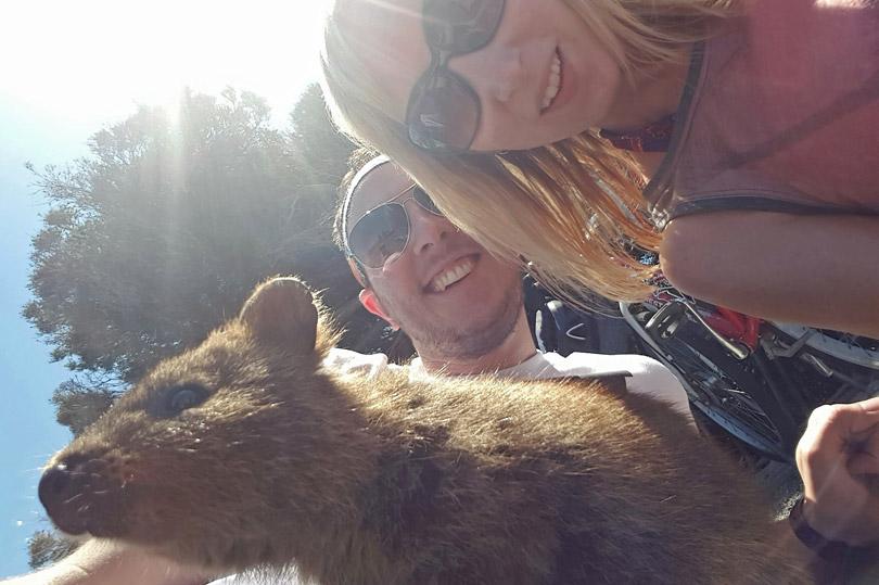 Quokka selfie on Rottnest Island, Australia