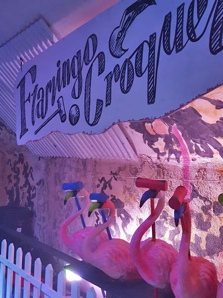 Play some flamingo croquet