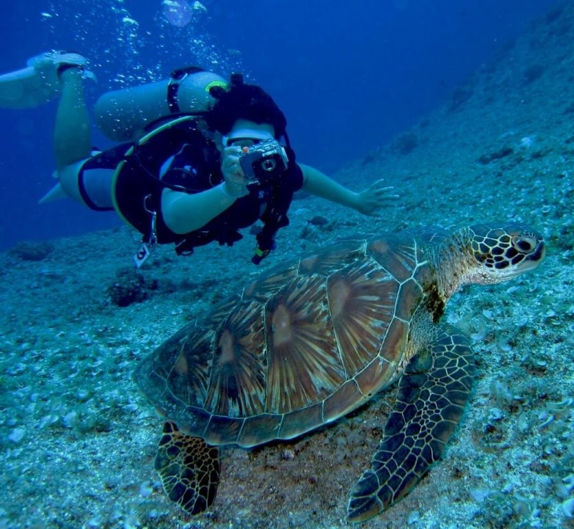Diving in Galapagos Islands | Quirutoa