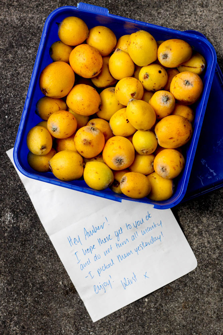 Loquats in the mail.