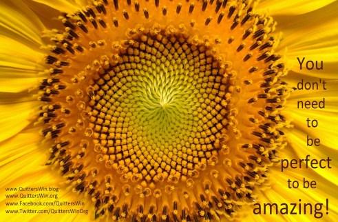 12.11.2016 sunflower not perfect