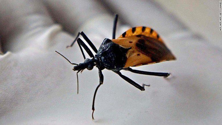 Detección del Trypanosoma cruzi en México