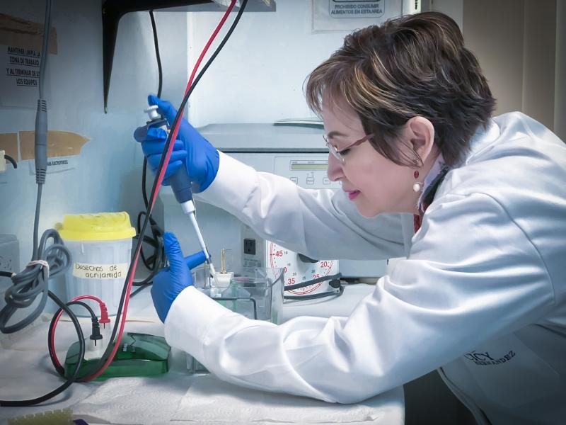 Nombran a Investigadora del CICY presidenta de la Academia Mexicana de Ciencias Sección Sureste