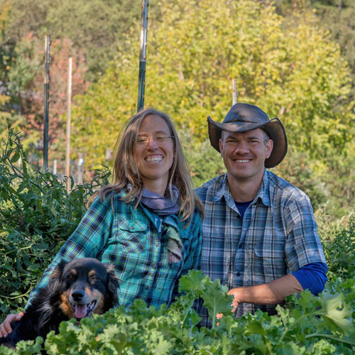 Episode 1 – Growing vegetables for fun and massive profit … really?