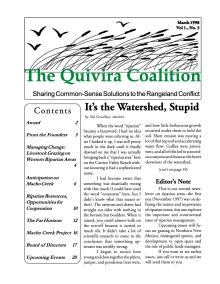 Quivira Newsletter #3