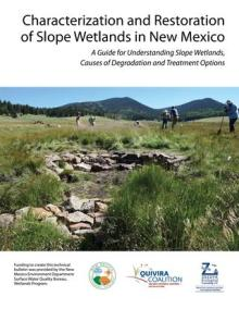 Characterization and Restoration of Slope Wetlands in New Mexico
