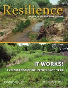 Resilience, Issue 41- It Works! A celebration of Bill Zeedyk's 80th Year