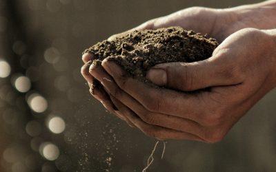Episode 24 – Practicing regenerative agriculture