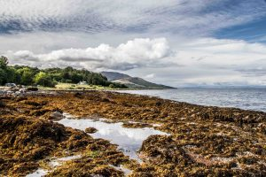 Local shore towards Brodick near Quivive Cottage