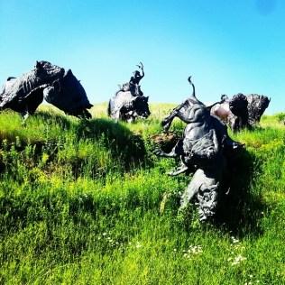 Tatanka, Story of the Bison