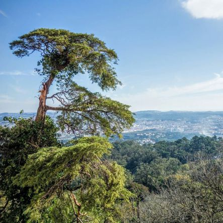 View of Lisbon from Sintra