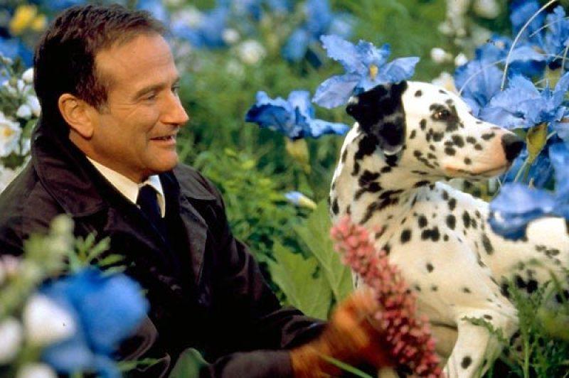Robin Willians na cena do filme Amor além da vida de 1998